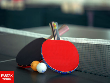 داوود محمدی به سمت عضو هیات رئیسه فدراسیون تنیس روی میز منصوب شد.