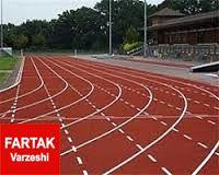 دونده المپیکی ایران امشب به کشور باز می گردد